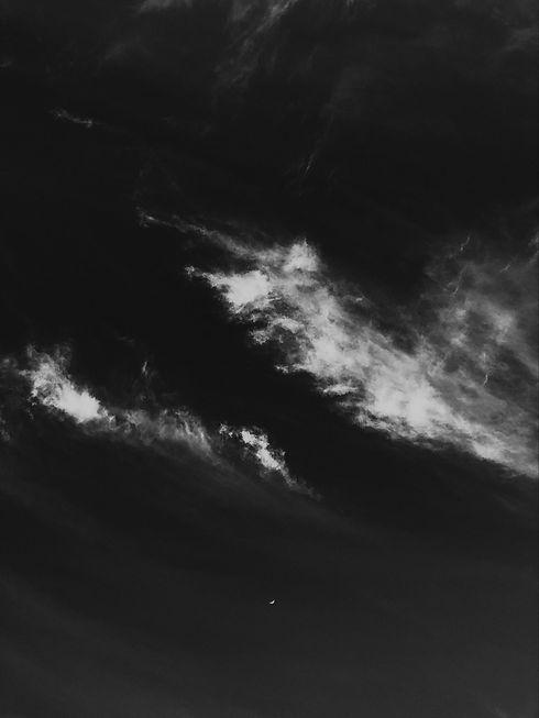 pexels-daria-shevtsova-2029159.jpg