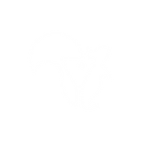 TPS Squirrel Logo-02.png
