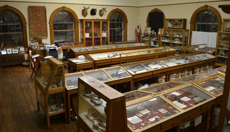 Main Exhibit room