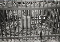 Crownstone 55 - USGS#58