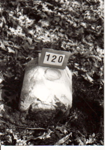 Crownstone 120 - USGS#124