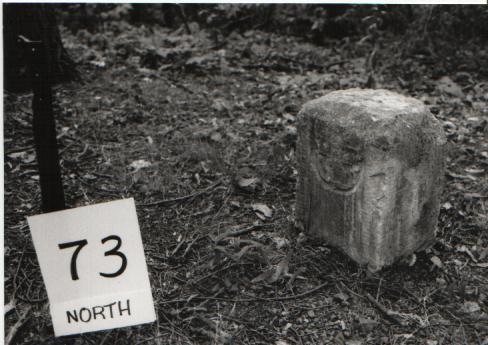 Crownstone 80 - USGS#73