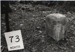 Crownstone 80 - USGS#73