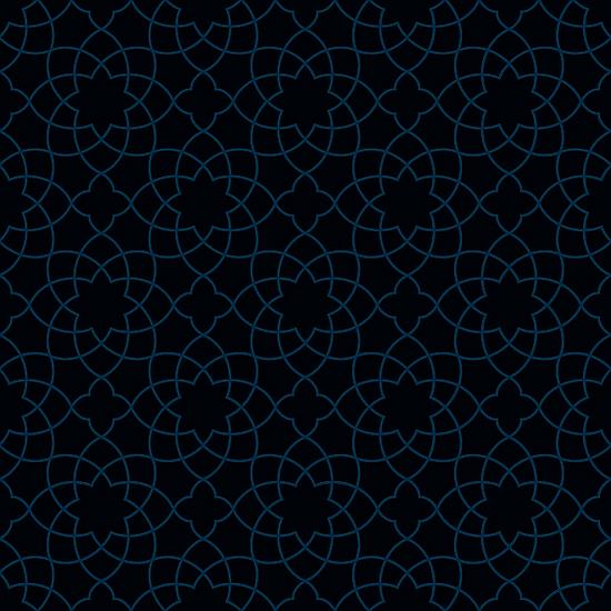 תבנית כחולה 2.png