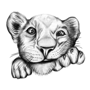 • Lion Cub •