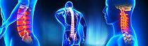 Spine treatment Orthopedics