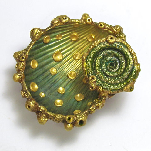 Spinner Shell