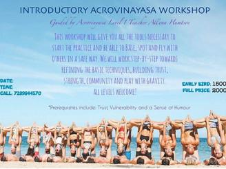 【Report】Introductory Acrovinyasa Workshop