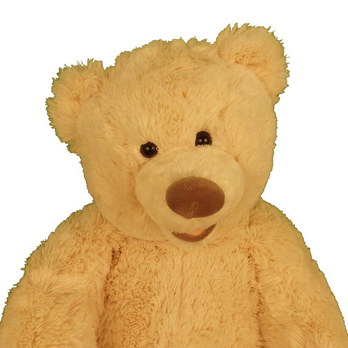 Large Tan Teddy Bear