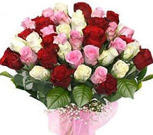 Red-Pink-and-White-Roses.jpg