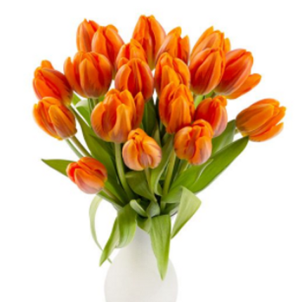 Add 20 Tulips to any Order for $39