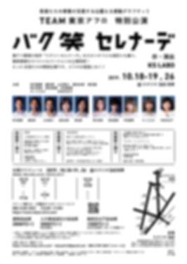 BSS_A4B_005-01.jpg