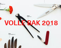 VolleBak2018.jpg