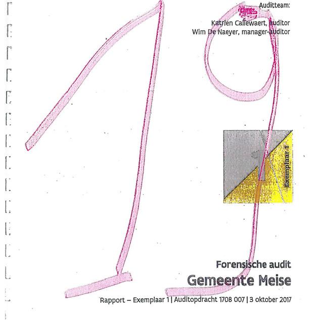 Forensische audit deel 1_Pagina_02.jpg