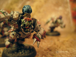 The Gouged Eye Orcs
