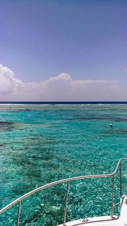 Hol Chan Barrier Reef