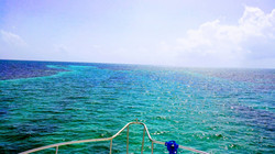 caye caulker barrier reef