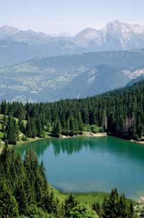 Alpes13.JPG