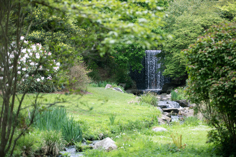 Jardin botanique4.JPG