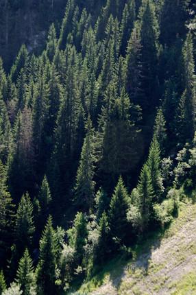 Alpes11.JPG