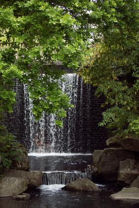 Jardin botanique3.JPG