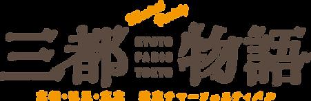 3city_logo.png