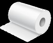 Paper Towel.png