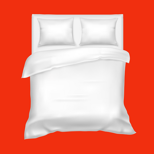 Queen Bed Sheets with Pillow Cases