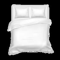 King Queen Bed.png