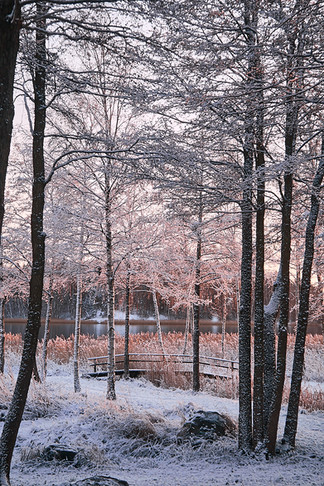 Täby_in_the_snow_17.jpg