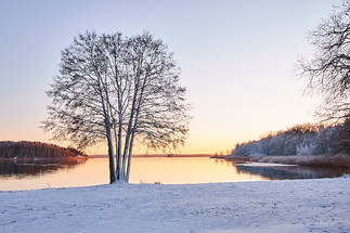 Täby_in_the_snow_9.jpg
