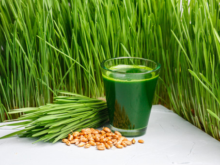 The Magic Superpowers of Wheatgrass