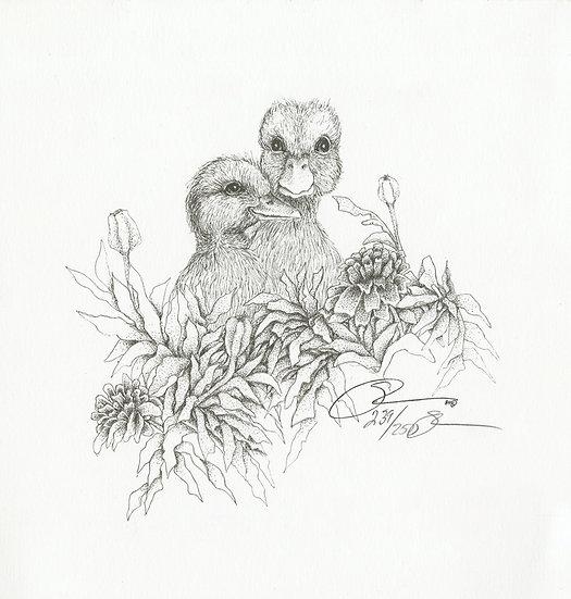 1984 Two Baby Ducks