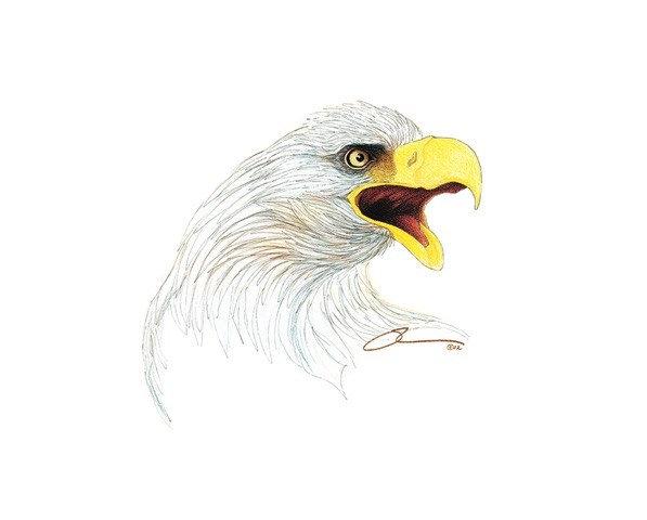 The Screaming Eagle