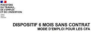 CaptureModeEmploi6Mois.JPG