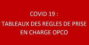 Capture_règles_de_prise_en_charge_OPCO.