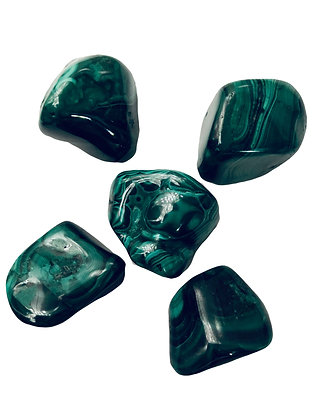 Lot de 5 pierres roulées malachite qualité Extra