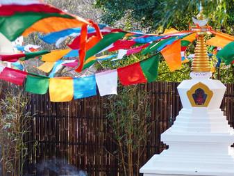 Rejoice! VNOS support an auspicious Stupa Project