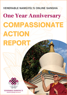 One Year Anniversary_Compassionate Actio