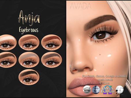 Anja Eyebrows