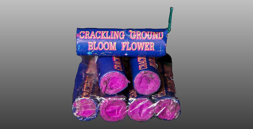 Ground Bloom Crackling (6-Pc.)