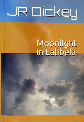 Moonlight pic3.jpg