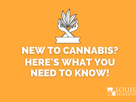 Are You A Marijuana Novice? Here's What You Need To Know!
