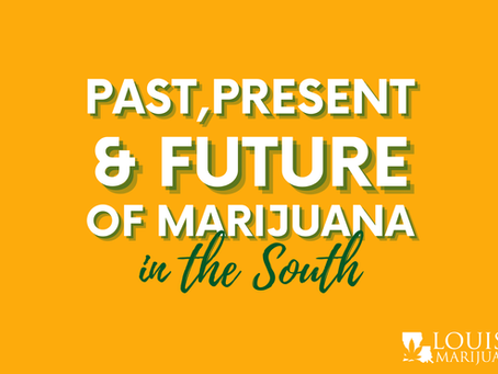 Past, Present and Future of Cannabis in the South: A Black & Student Perspective