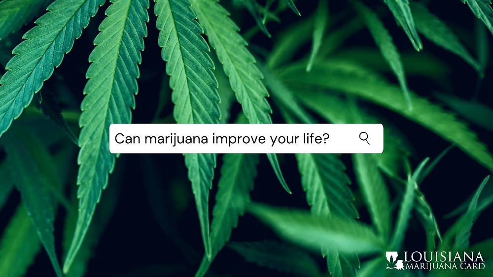 can marijuana improve your life?