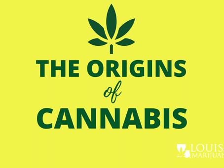 The Origins of Marijuana: Where Did it All Begin