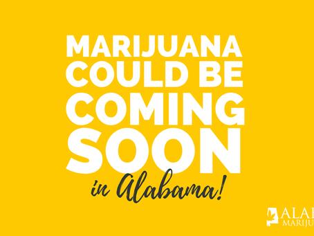 Medical Marijuana Could Be Coming To Alabama Sooner Than You Think!