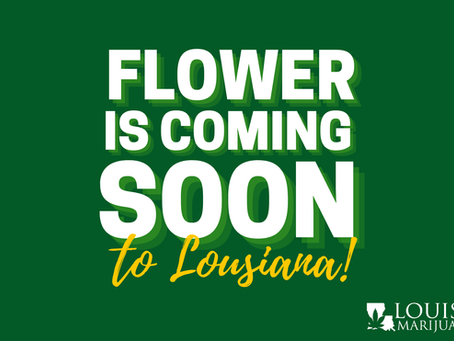 Flower is Coming Soon to Louisiana: Get your Medical Marijuana Card Just in Time