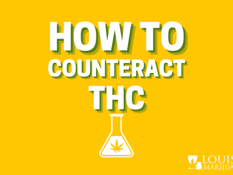 How to Counteract THC: 7 Ways to Sober Up