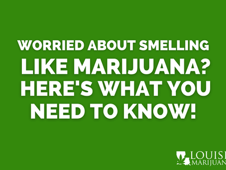 Worried about smelling like marijuana? Here's what you need to know!